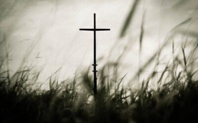The Cross We Won't Carry: Unity, Orthodoxy, and Theological Pride