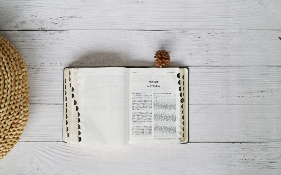 The Beginner Believer: How to Stop Depending on a Devotional